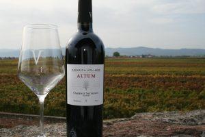 Wo Wein im Turm probiert wird